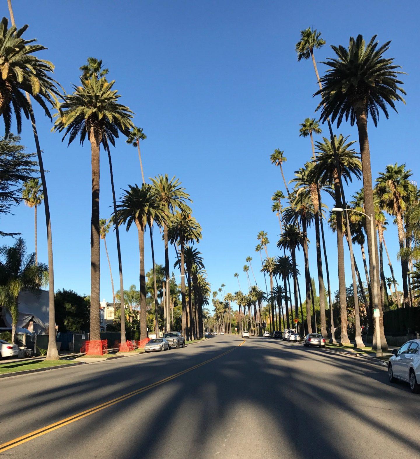 LA Diaries: My Holiday Part II